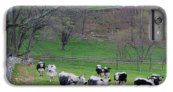 IPhone 7 Plus Case featuring the photograph New England Spring Pasture Square by Bill Wakeley