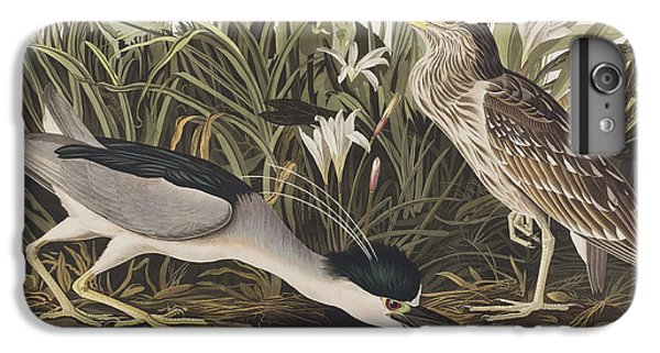 Night Heron Or Qua Bird IPhone 7 Plus Case by John James Audubon