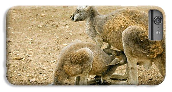 Kangaroo iPhone 7 Plus Case - Nursing Time by Mike  Dawson