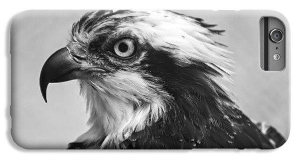Osprey iPhone 7 Plus Case - Osprey Monochrome Portrait by Chris Flees