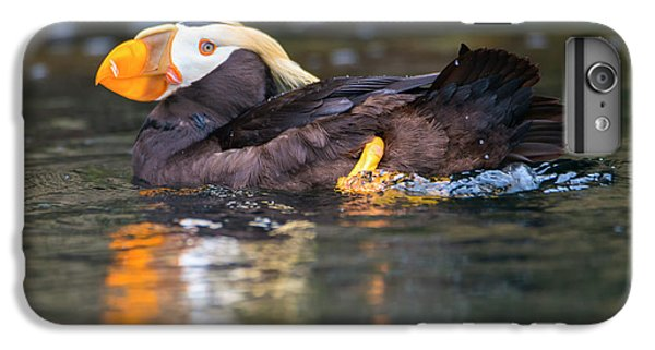 Puffin iPhone 7 Plus Case - Paddling Puffin by Mike Dawson