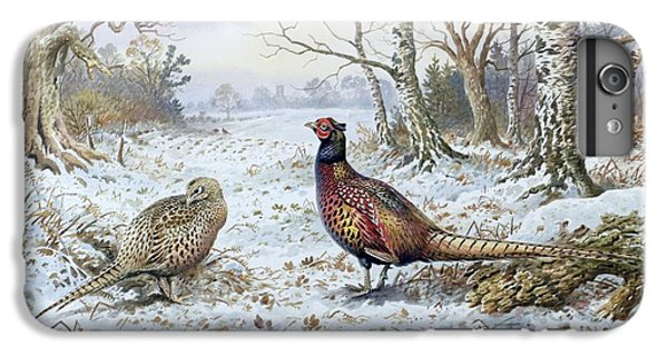 Pheasant iPhone 7 Plus Case - Pair Of Pheasants With A Wren by Carl Donner