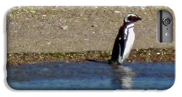 Penguin On The Beach IPhone 7 Plus Case by Sandy Taylor