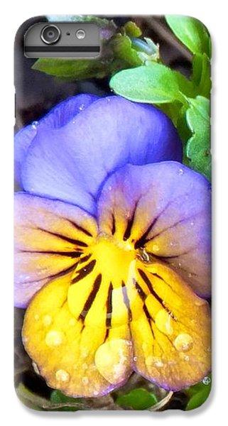 Pensees Bicolores IPhone 7 Plus Case