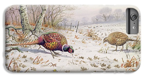 Pheasant And Partridge Eating  IPhone 7 Plus Case by Carl Donner
