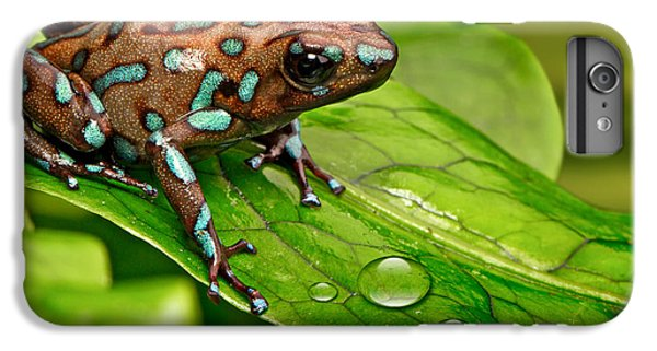 poison art frog Panama IPhone 7 Plus Case by Dirk Ercken