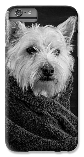 Mammals iPhone 7 Plus Case - Portrait Of A Westie Dog by Edward Fielding
