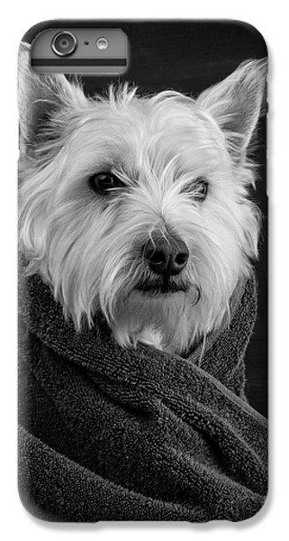 Portrait Of A Westie Dog IPhone 7 Plus Case by Edward Fielding