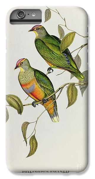 Lovebird iPhone 7 Plus Case - Ptilinopus Ewingii by John Gould