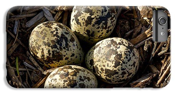 Quartet Of Killdeer Eggs By Jean Noren IPhone 7 Plus Case
