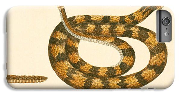Rattlesnake IPhone 7 Plus Case by Mark Catesby
