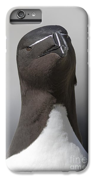 Razorbill iPhone 7 Plus Case - Razorbill by Karen Van Der Zijden