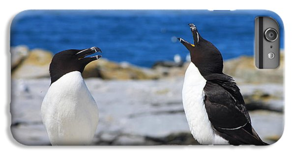 Razorbills Calling On Island IPhone 7 Plus Case by John Burk