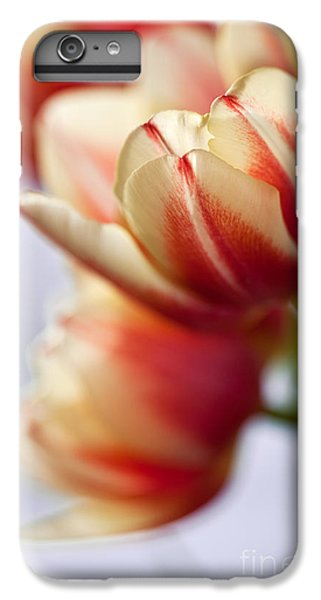 Tulip iPhone 7 Plus Case - Red And White Tulips by Nailia Schwarz