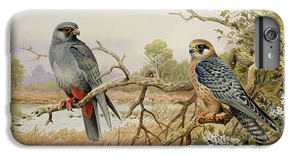 Red-footed Falcons IPhone 7 Plus Case by Carl Donner