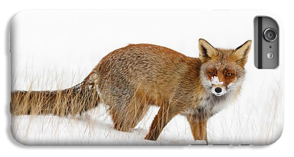 Red Fox In A Snow Covered Scene IPhone 7 Plus Case by Roeselien Raimond