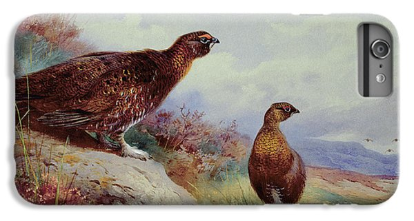 Red Grouse On The Moor, 1917 IPhone 7 Plus Case by Archibald Thorburn