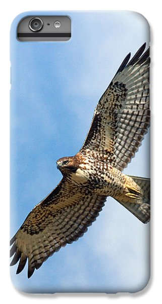 Hawk iPhone 7 Plus Case - Red Tail Hawk by Randall Ingalls