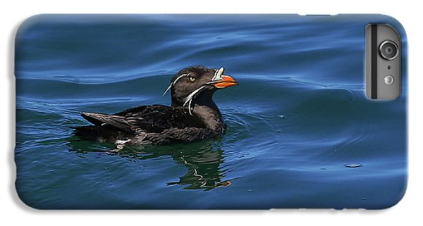Auklets iPhone 7 Plus Case - Rhinocerous by BYETPhotography