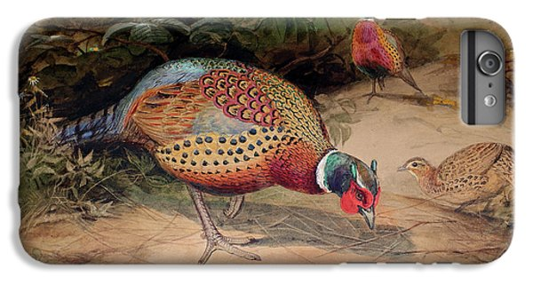 Ring Necked Pheasant IPhone 7 Plus Case by Joseph Wolf