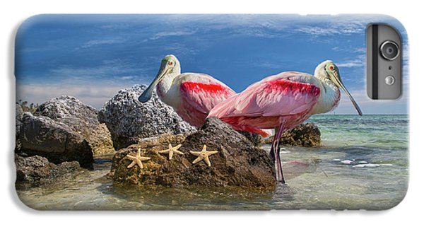 Spoonbill iPhone 7 Plus Case - Roseate Spoonbill Florida Keys by Betsy Knapp