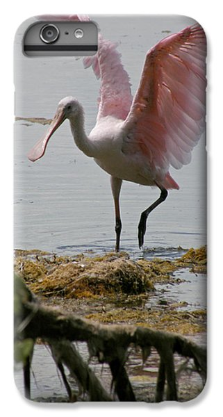 Spoonbill iPhone 7 Plus Case - Roseate Wave by Kimberly Mohlenhoff