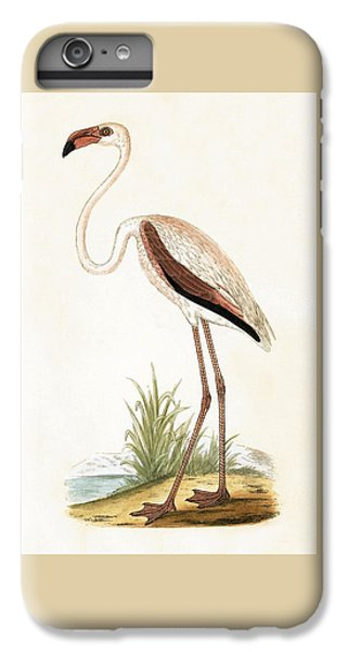 Rosy Flamingo IPhone 7 Plus Case by English School