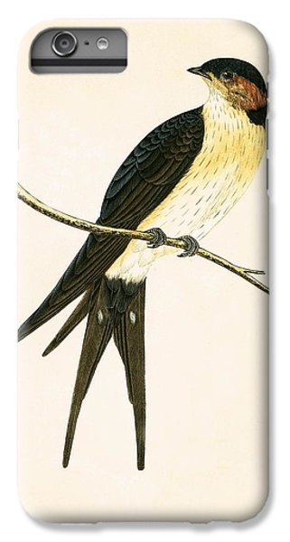 Rufous Swallow IPhone 7 Plus Case by English School