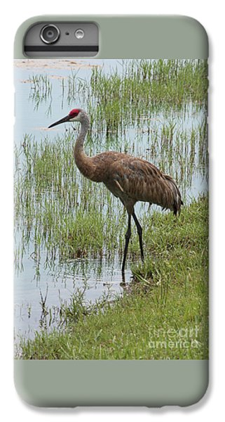 Sandhill In The Marsh IPhone 7 Plus Case
