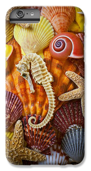 Seahorse And Assorted Sea Shells IPhone 7 Plus Case by Garry Gay