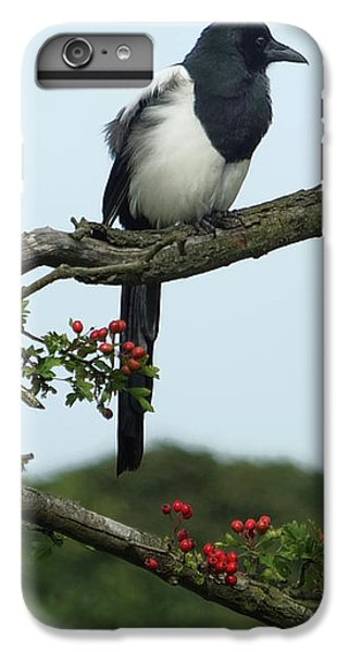 September Magpie IPhone 7 Plus Case
