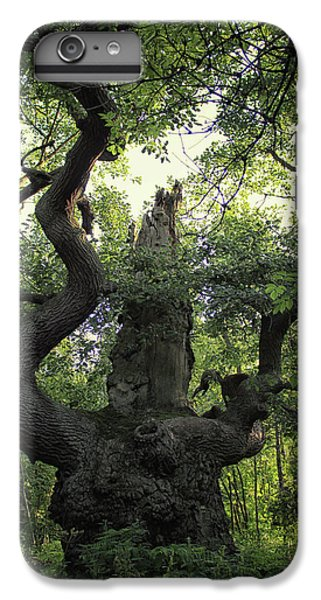 Dungeon iPhone 7 Plus Case - Sherwood Forest by Martin Newman