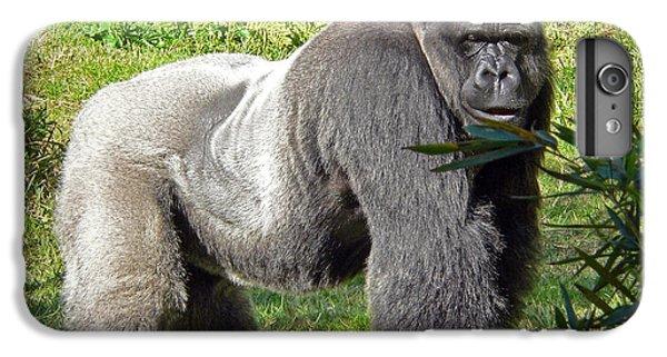 Gorilla iPhone 7 Plus Case - Silverback by Steven Sparks