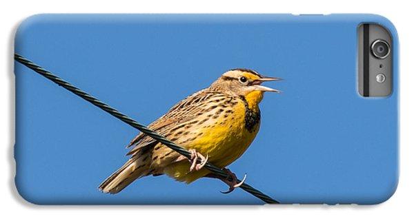 Meadowlark iPhone 7 Plus Case - Singing On The Wire by Jurgen Lorenzen