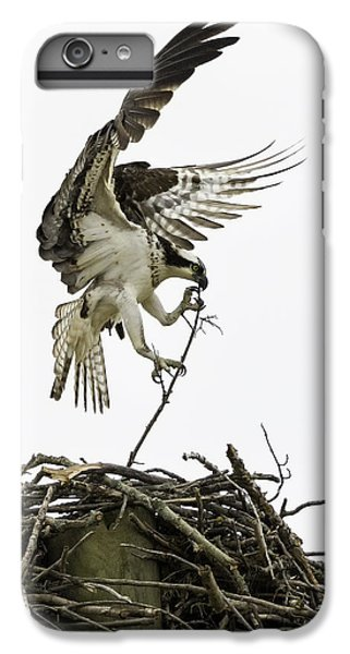 Osprey iPhone 7 Plus Case - Sky Ballet by Everet Regal