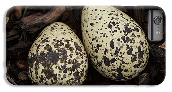 Killdeer iPhone 7 Plus Case - Speckled Killdeer Eggs By Jean Noren by Jean Noren