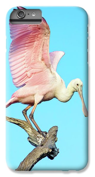 Spoonbill Flight IPhone 7 Plus Case