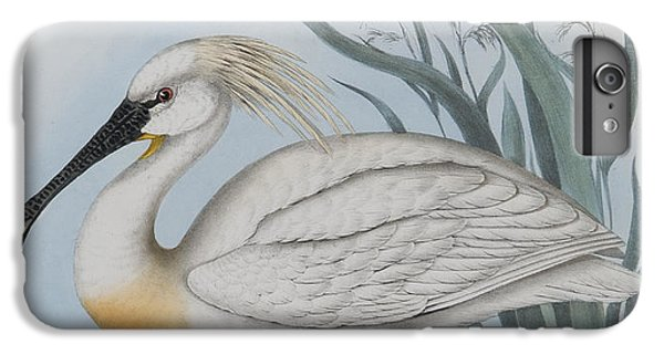 Spoonbill iPhone 7 Plus Case - Spoonbill by John Gould