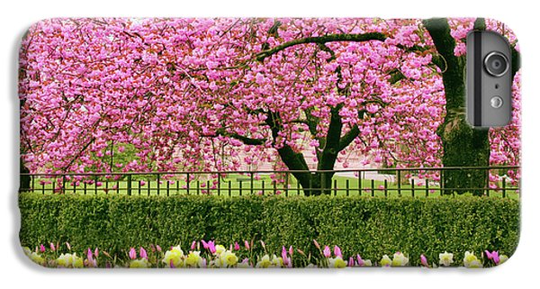 IPhone 7 Plus Case featuring the photograph Spring Extravaganza by Jessica Jenney