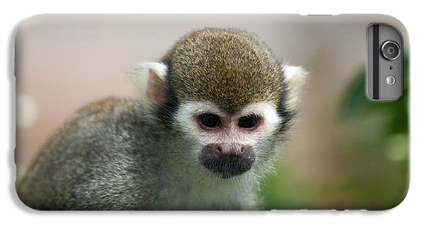 Squirrel Monkey IPhone 7 Plus Case by Amanda Elwell