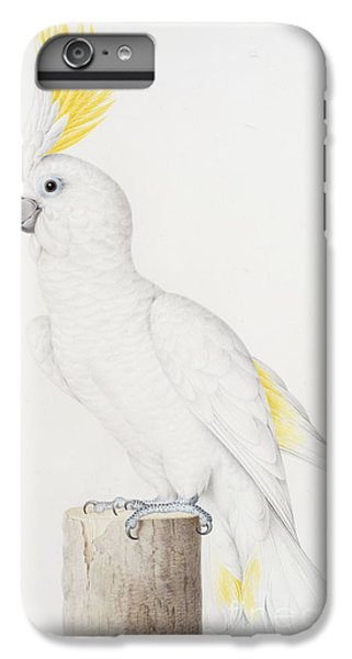 Sulphur Crested Cockatoo IPhone 7 Plus Case by Nicolas Robert