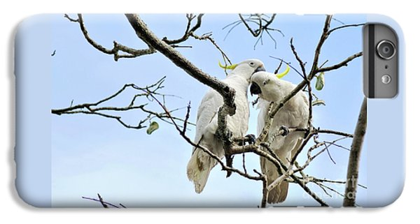 Sulphur Crested Cockatoos IPhone 7 Plus Case by Kaye Menner