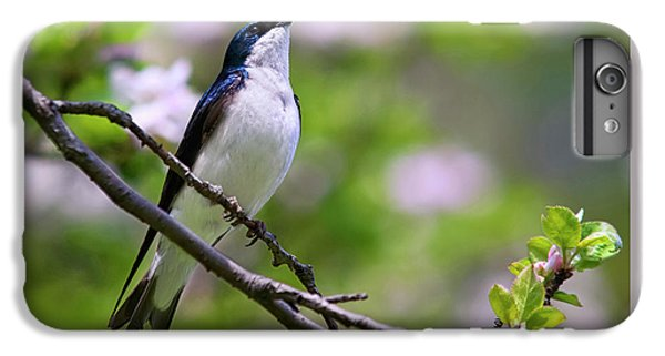 Swallow Song IPhone 7 Plus Case by Christina Rollo