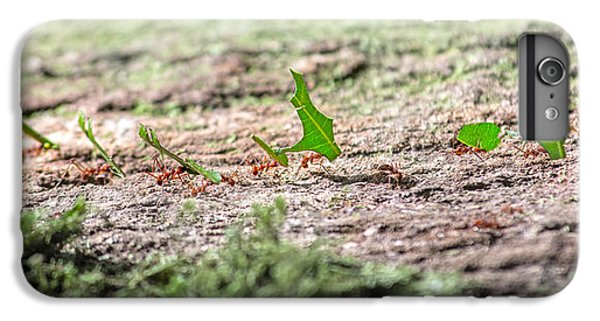 The Leaf Parade  IPhone 7 Plus Case by Betsy Knapp