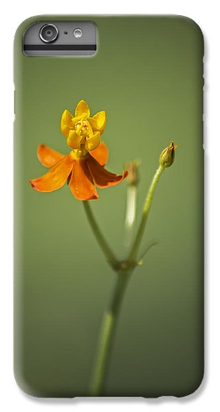 The One - Asclepias Curassavica - Butterfly Milkweed IPhone 7 Plus Case by Johan Hakansson