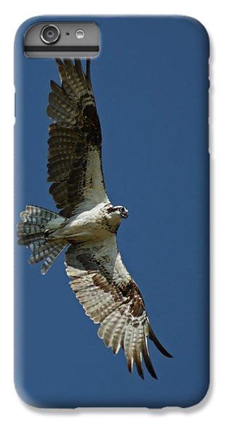 The Osprey IPhone 7 Plus Case by Ernie Echols