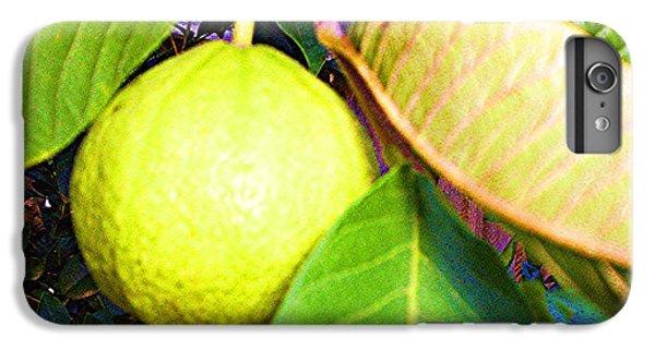 The Rose Apple IPhone 7 Plus Case