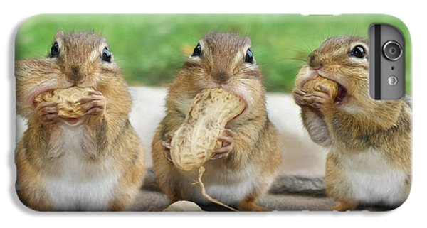 The Three Stooges IPhone 7 Plus Case by Lori Deiter