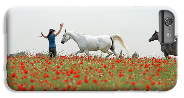Three At The Poppies' Field IPhone 7 Plus Case