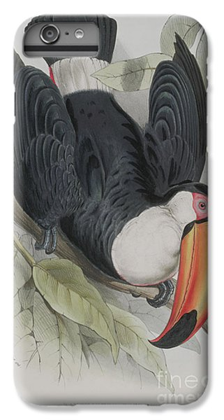 Toco Toucan IPhone 7 Plus Case